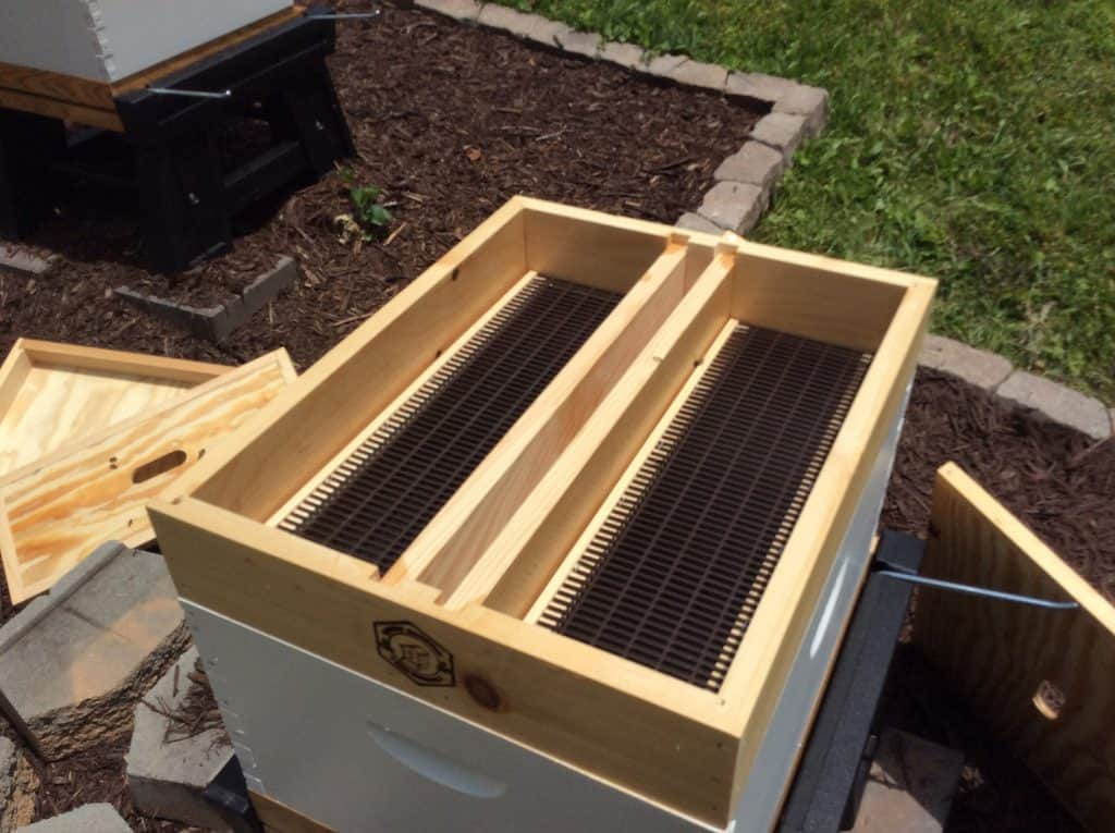 Place the Top Hive Feeder