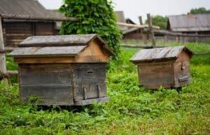 Vintage beehive
