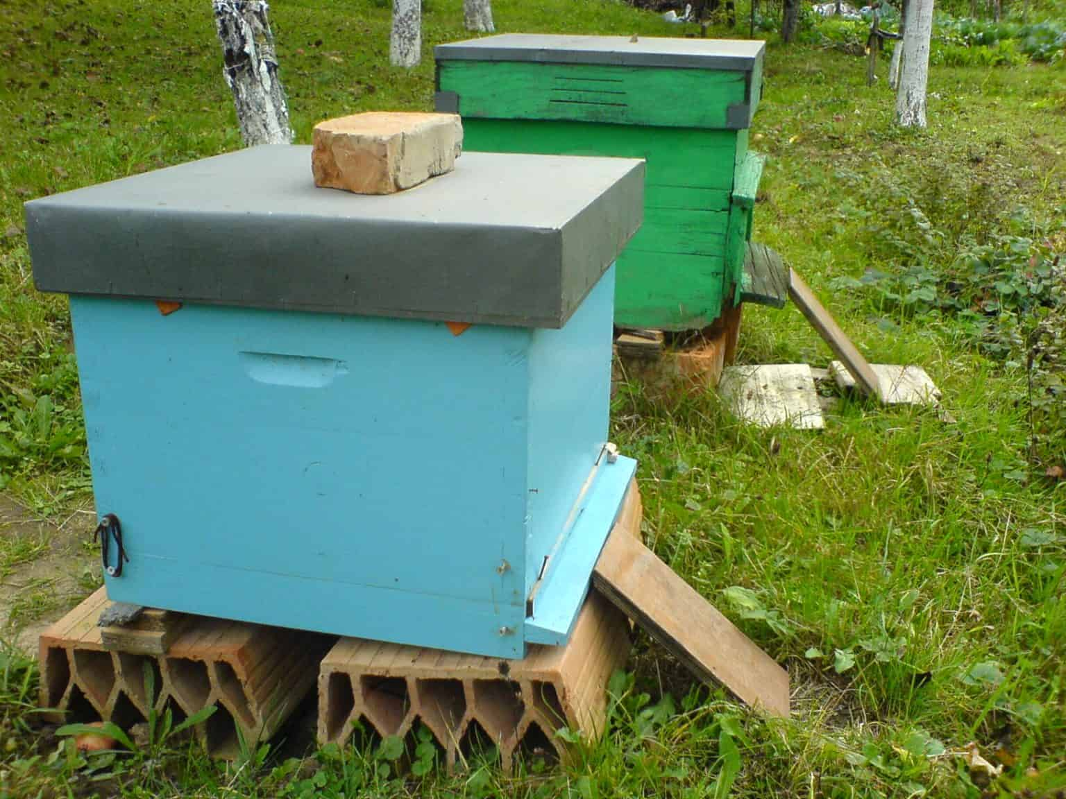 Weighing your beehive why and how perfectbee for Modern hive