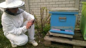 Hive Monitor