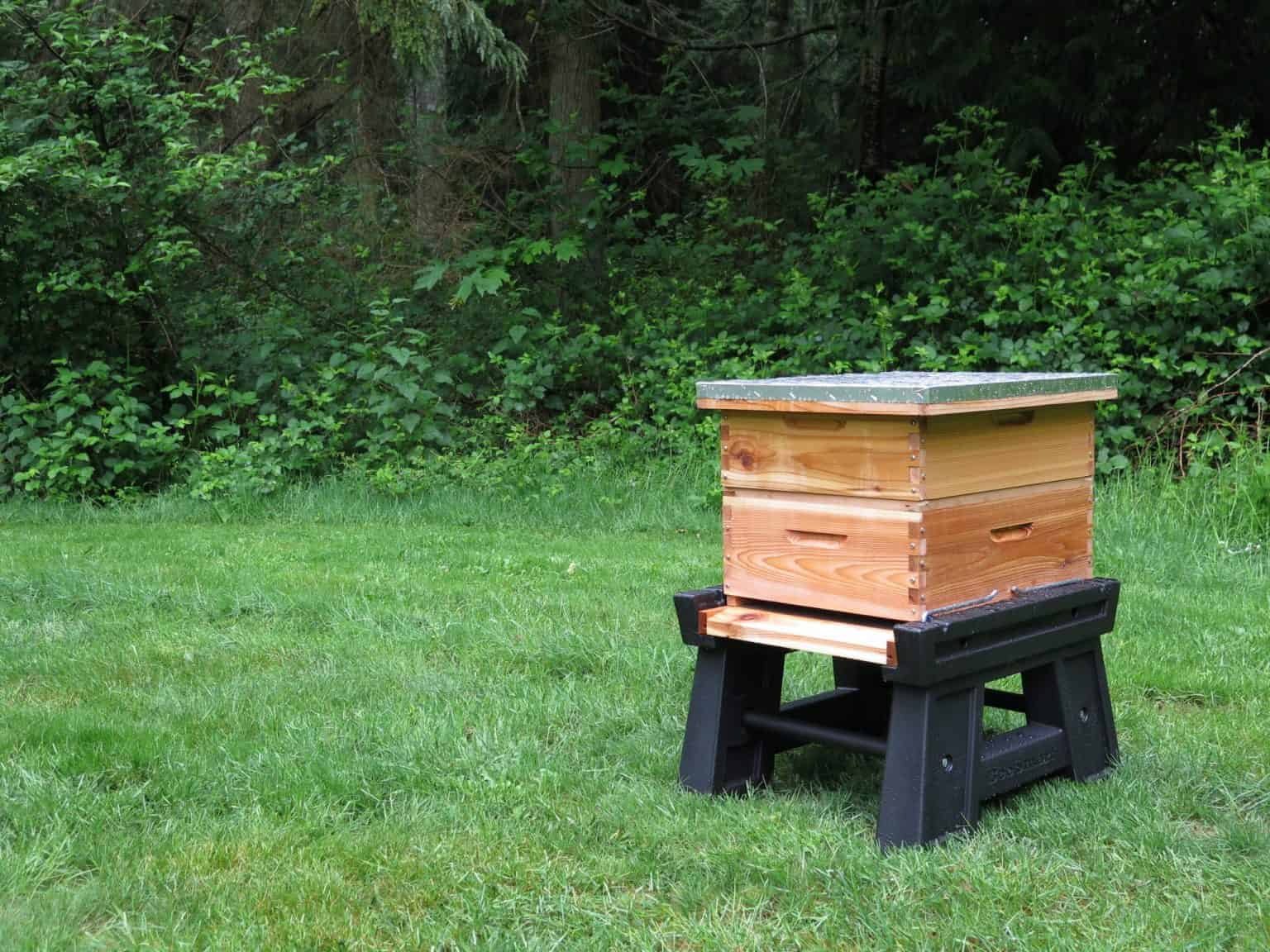 Hive Stand Designs : A detailed look at the langstroth beehive perfectbee