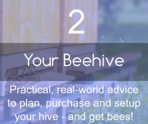 your-beehive-banner