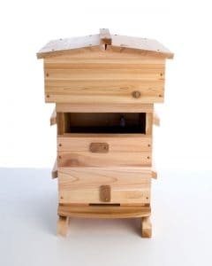 Warre hive with window