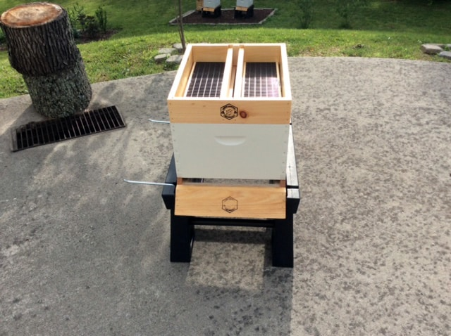 Hive Top Feeder In Place