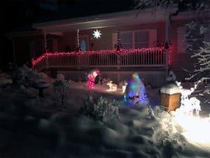 Pre-Christmas Snowfall