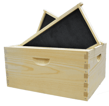 Complete bee box with frames
