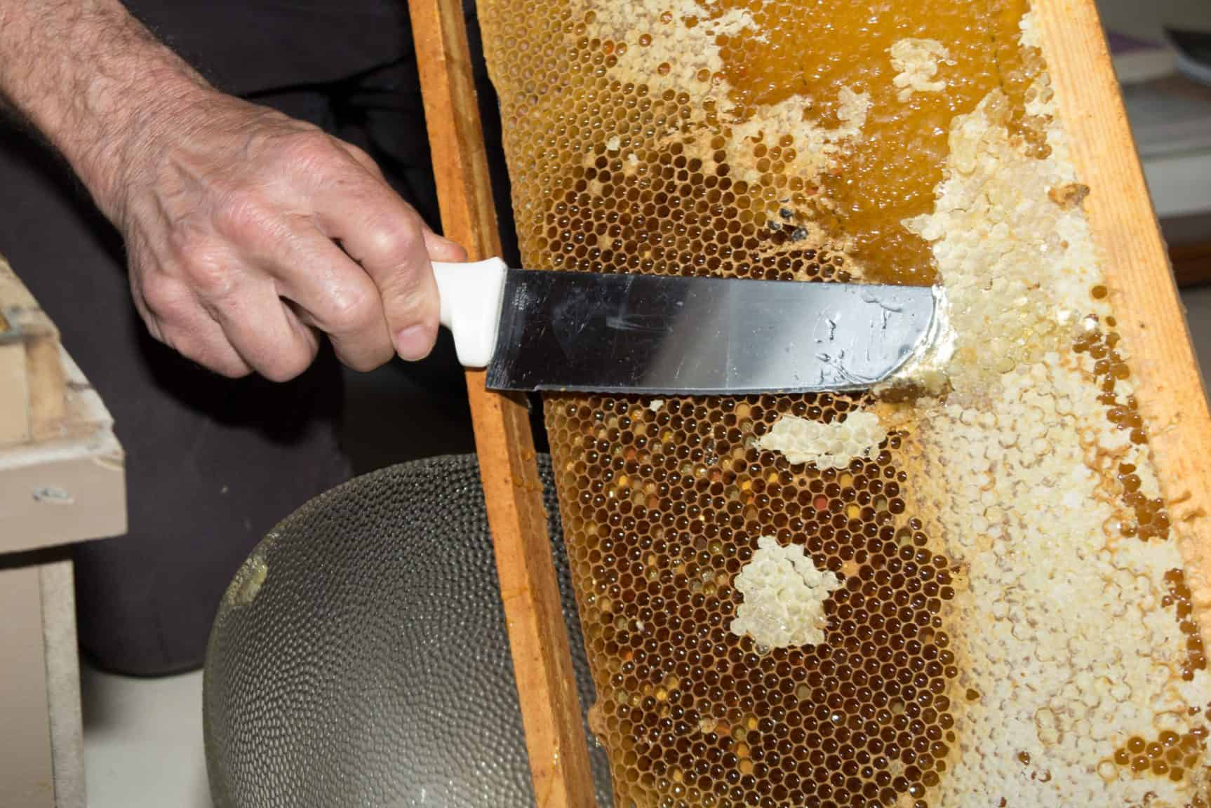 Honey harvesting