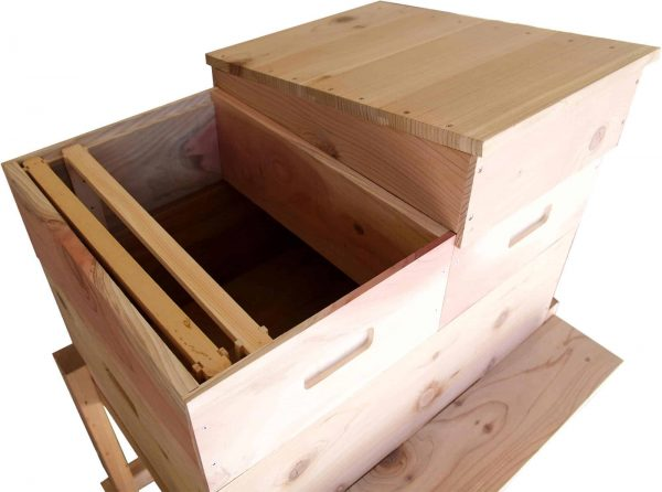 Horizontal Langstroth Hive Inside