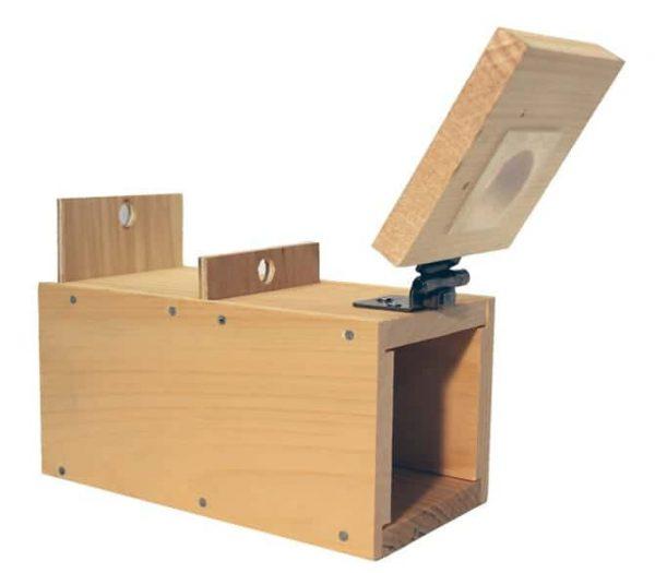 Bee Lining Box