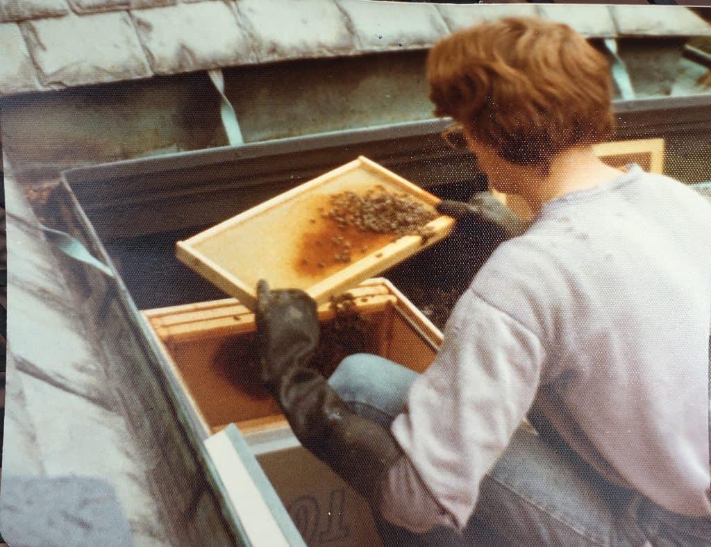 Sandy Soares Beekeeping In 1978