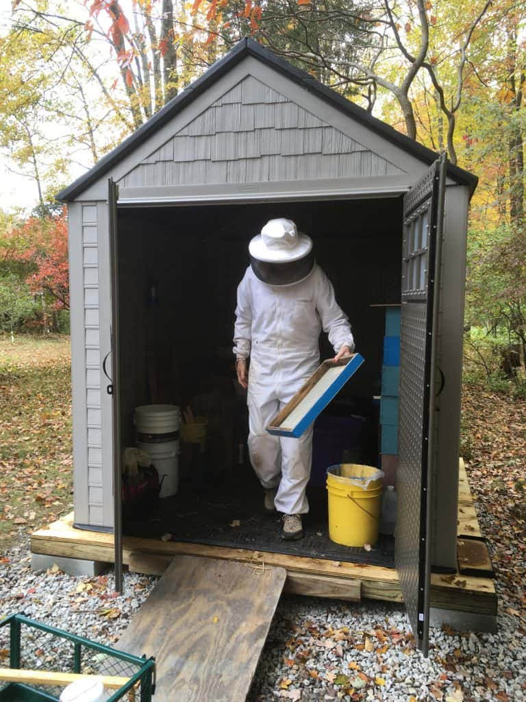 Sandy Soares, Bee Shed